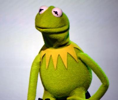 muppetsarticle5